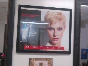 salon pic